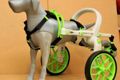 prototyp vozíku anyonego