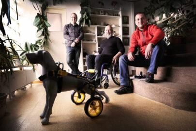 anyonego tým, vozíky pro psy