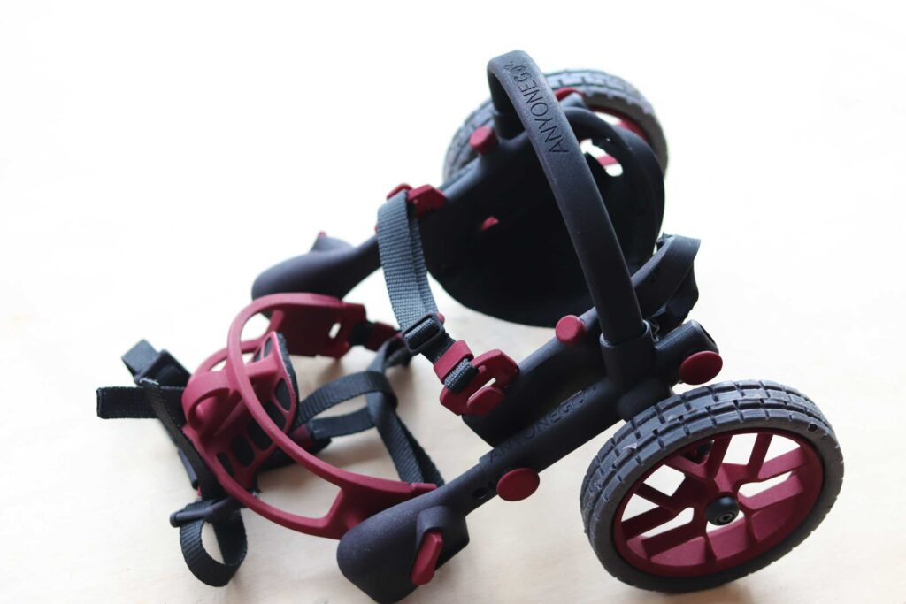cart for handicapped dogs, anyonego dog wheelchair