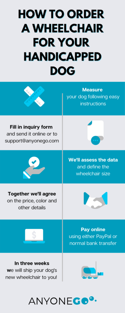infographics, anyonego, dog wheelchair order
