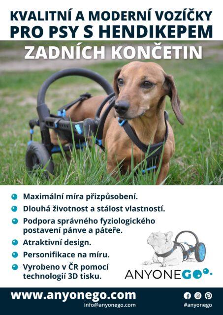 anyonego, vozík pro psa, plakát, veterina